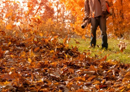 How to Avoid Injury During Fall Cleanup