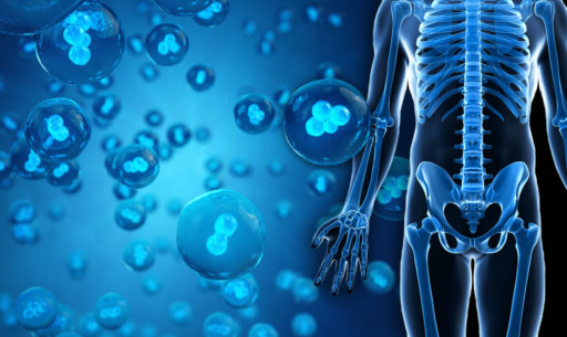 Stem Cell Therapy: Is it Safe? - Goodyear Chiropractic